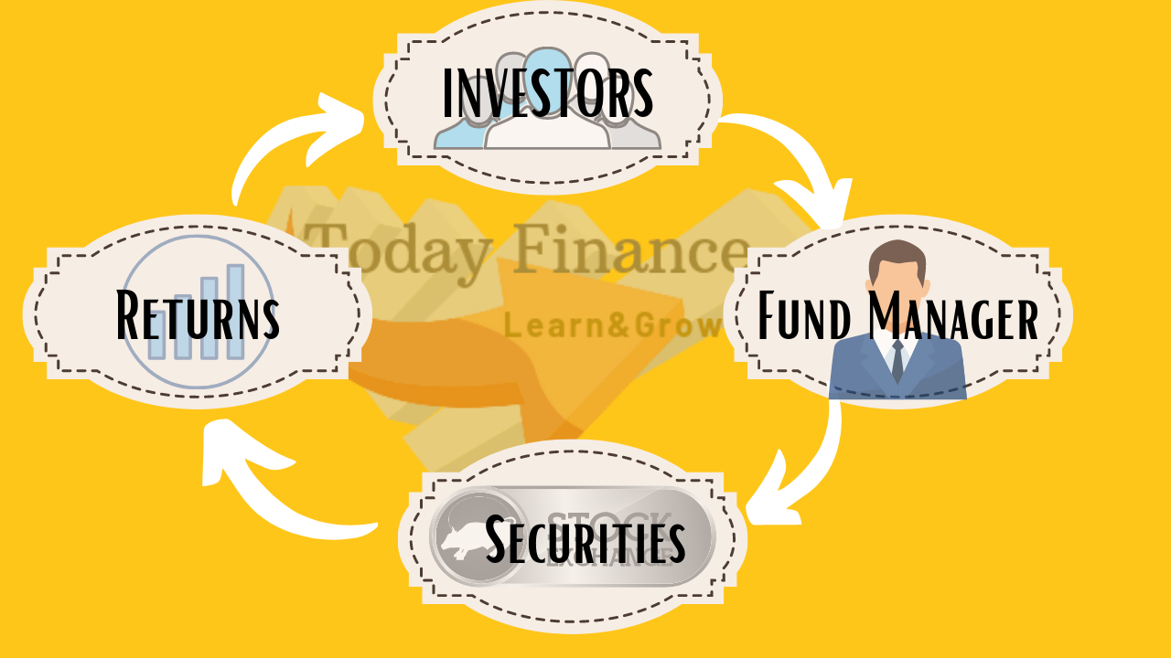 Beginners Guide To Mutual Fund